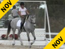 Anja Plonzke<br> Riding &amp; Lecturing<br> Le Mont D&#039;or<br> 12 yrs. Gelding<br> Training: GP Level<br> Owner: Anja Plonzke<br> Duration: 34 minutes