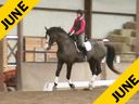 CDS Annual Symposium<br> Christine Traurig<br> Assisting<br> Anna Wood<br> Hotshot AF<br> 4 yrs. old Gelding<br> Oldenburg<br> by: Hotline out of Spielberg Mare<br> Duration: 46 minutes