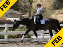 Elizabeth Ball<br> Riding & Lecturing<br> De La Frontera<br> Oldenburg<br> by: De Niro<br> 10 yrs. old Mare<br> Duration: 39 minutes