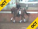Hubertus Graf Zedtwitz<br> Riding & Lecturing<br> Wild Wild West<br> Hanoverian<br> 13 yrs. old Gelding<br> Training: GP Level<br> Owner: Christina Linda<br> Duration: 48 minutes
