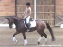 NEDA Fall Symposium<br>Ingrid Klimke<br> Assisting<br> Heidi Conlon<br> Donnazauber<br> 13 yrs. Old Gelding<br> Training: GP<br> Duration: 22 minutes