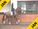 Penny Rockx Riding & Lecturing Zero Gravity KWPN by: Royal Hit out Of Contago Mare 6 yrs. old Gelding Training: 2nd Level Owned By: Penny & Johann Rockx Duration: 33 minutes