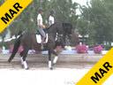 Kathy Connelly<br>Assisting<br>Nora Batchelder<br>Bretone<br>Hanoverian<br>by: Bretano II<br>17 yrs. old Stallion<br>Training: GP<br>Duration: 33 minutes