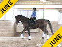 Hans Biss<br> Assisting<br> Amy Allen<br> Cavalieri<br> Hanovarian<br> 9 yrs. old Gelding<br> Training: 2nd Level<br> Owner: Amy Allen<br> Duration: 19 minutes