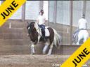 Day 2<br> Hans Biss<br> Assisting<br> Siri Bezdicek<br> Quigley<br> Irish Sport Horse<br> 10 yrs. old Gelding<br> Training: Training Level<br> Owner: Ellen Ruckert<br> Duration: 48 minutes