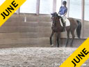 Day 2<br> Hans Biss<br> Assisting<br> Kimberely Luijten<br> Lance<br> Holsteiner<br> 19 yrs. old Gelding<br> Training: 1st Level<br> Owner: Kimberley Luijten<br> Duration: 36 minutes