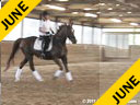 Hans Biss<br> Assisting<br> Jody Haymond<br> Kelstar<br> 18 yrs. old Mare<br> Training: 1st Level<br> Owner: Jody Haymond<br> Duration: 33 minutes