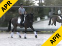 Kathy Connelly<br> Assisting<br> Claudia Tarlov<br> Taptoe<br> KWPN<br> by: Democrat<br> 11 yrs. old Dutch Gelding<br> Training: PSG<br> Duration: 34 minutes