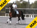 Day 2<br> Jan Brink<br> Assisting<br> Shauntel Bryant<br> Harmony<br> Hanoverian<br> by: Hohenstein<br> 5 yrs. old Mare<br> Training: 2nd/3rd Level<br> Owner: Sandi Fortun<br> Duration: 40 minutes