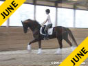 Hans Biss<br> Assisting<br> Catherine Orton<br> Rambo<br> Hanovrian<br> by: Donnerhall<br> 8 yrs. old Gelding<br> Training: 2nd Level<br> Owner: Catherine Orton<br> Duration: 35 minutes