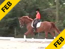 Shannon Dueck<br>Assisting<br>Debbie Hilton<br>Divine<br>Hanoverian Thoroughbred<br>13 yrs. old Mare<br>Training: First Level<br>Duration: 53 minutes
