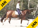 Shanon Dueck<br>Riding & Lecturing<br>Martini<br>One Year Under Saddle<br>Hanovarian<br>5 yrs old Gelding<br>Training: Level 1<br>Duration: 38 minutes