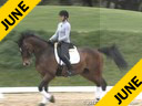 Elizabeth Ball<br> Riding & Lecturing<br> Prince Pablo<br> Warmblood Gelding<br> 14 yrs. old<br>  Training: PSG Level<br> Owner: Eckstein Farm<br> Duration: 42 minutes