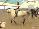 IDCTA Illinios Dressage & Combined Training Association<br> Lilo Fore<br> Assisting<br> Andi Patzwald<br> Bellini<br> Training:2nd Level<br> Duration: 29 minutes