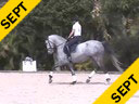 Kathy Connelly<br> Assisting<br> Tori Polonitza<br> Seraphina MRF<br> Hanoverian<br> by: Sinatra Song<br> 8 yrs. Old Mare<br> Training:  PSG<br> Owner: Tori Polonitza<br> Duration: 30 minutes