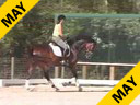 Shannon Dueck<br>Assisting<br>Jean Klaucke<br>Martini<br>Hanoverian<br>6 yrs.old Gelding<br>Training: 2nd Level<br>Duration: 31 minutes