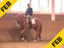 Rudolf Zeilinger<br>Riding & Lecturing<br>Priboy<br>Westphalian<br>6 yrs. old Gelding<br>Training: 4th Level<br>Duration: 23 minutes