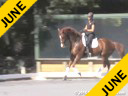 NEDARien van der Schaft Assisting Grace Goodby Schabos Waitongo& 18 yrs. old Gelding  Callie O'Connell Ferry 5 yrs. old Gelding Duration: 34 minutes