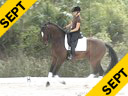 Conrad Schumacher<br> Assisting<br> Dorie Addy-Crow<br> Sakramenter<br> Oldenburg<br> by: Samaranto<br> 4 yrs. old Gelding<br> Training: 1st Level Warming<br> Duration: 20 minutes