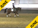 IDCTA Illinios Dressage & Combined Training Association<br> Lilo Fore<br> Assisting<br> Kerry Johnson<br> Red Fish Blue Fish<br> Training: 4th Level<br> Duration: 38 minutes