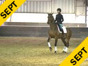 IDCTA Illinois Dressage & Combined Training Association<br> George Williams<br> Assisting<br> Katie Miskovic<br> SF Lycanthorpe<br> 4 yrs. Old  Gelding<br> Rheinland Pfalzsaar International<br> Training: Training Level<br> Duration: 40 minutes