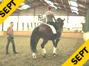 Johann Rockx<br>Training the Passage<br>with a variety<br>of horses in hand<br>and on horseback.<br>Duration: 45 minutes