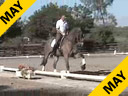 USDF APPROVED<br> University Accreditation<br> Steffen Peters<br> Riding & Lecturing<br> Lombardi<br> 11 yrs. old Gelding<br> Holsteiner<br> Owner: Peggy & Fred Furth<br> Training: GP Level<br> Duration: 35 minutes