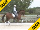 Jan Brons<br> Riding & Lecturing<br> Tornado<br> KWPN<br> 8 yrs. old Gelding<br> Training Prix St. George<br> Owner: Elizabeth Schaffner<br> Duration: 24 minutes
