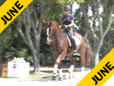 Kathy Connelly<br> Assisting<br> Jami Kment<br> Chivalry<br> Holsteiner<br> by: Cesar<br> 7 yrs. old Gelding<br> Training: 3rd/4th Level<br> Owner: Elaine Vandeventer<br> Duration: 32 minutes