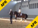 Day 2<br> Jan Brink<br> Assisting<br> Robin Matteson<br> Eye Candy<br> 14 yrs. Old Hanoverian<br> 16th schooling I-1<br> Owner: Robin Matteson<br> Training: PSG/I1<br> Duration: 43 minutes