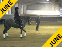 IDCTA Illinois Dressage & Combined Training Association<br> George Williams<br> Assisting<br> Alya Saddique<br> Bolero JS<br> 10 yrs. Old  Gelding<br> Lusitano<br> Training: 4th Level<br> Duration: 45 minutes