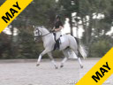 Kathy Connelly<br> Assisting<br> Ryan Yap<br> Walter<br> Hanoverian<br> by: Weltmeyer<br> 7 yrs. old Gelding<br> Training: 3rd Level<br> Owner: Katie Boldt<br> Duration: 25 minutes