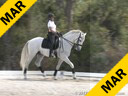 Bill Warren<br> Assisting<br> Joann Bunano<br> Verao De Retiro<br> Lusitano<br> 9 yrs. old Stallion<br> Training: 4th Level<br> Owner: Joann Bunano<br> Duration: 30 minutes