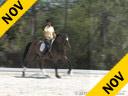 Rudolf Zeilinger<br> Riding & Lecturing<br> Infinio<br> Baden-Wurttemberg<br> by: Indigo<br> 8 yrs. old Gelding<br> Training: 1-2/ GP<br> Owner: Rudolph Zeilinger<br> Duration:  23 minutes