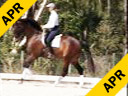 Shannon Dueck<br> Riding & Lecturing<br> Otharr<br> KWPN 10 yrs. old<br> Training: Grand Prix<br> Duration: 41 minutes