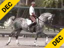 USDF APPROVED<br>University Accreditation<br>George Williams<br>Riding & Lecturing<br>Devon<br>7 yrs. old Gelding<br>Westfalen<br>Training: 4th Level<br>Duration: 39 minutes