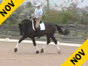 Available on DVD No.25<br>Hubertus Schmidt<br>Riding & Lecturing<br>& also Assisting<br>Todd Fletrich<br>Santos<br>by: Flemingh<br>KWPN 8 yrs old Gelding<br>Training:Prix St. George<br>Duration: 40 minutes