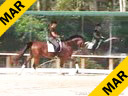 Shannon Dueck<br>Assisting<br>Jean Klaucke<br>Martini<br>6 yrs. old<br>Training: 2nd Level<br>Duration: 35 minutes