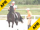 Hubertus Schmidt<br> Riding &<br> Asssiting<br> Kathy Priest<br> Shostakovich<br> Belgium Warmblood<br> 11yrs. old<br> Training: Grand Prix<br> Duration: 50 minutes