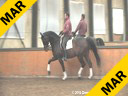Johann Rockx<br> Riding & Lecturing<br> Verdi de la Fazenda<br> 8yrs. old Gelding<br> KWPN<br> by: Florett AS<br> Owned by:<br> Johann & Penny Rockx<br> Training: PSG level<br> Duration: 34 minutes