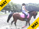 Lendon Gray<br> Assisting<br> Rachael Chowanec<br> Hakuna Matata<br> Welsh/TB Cross<br> 7 yrs. old Gelding<br> FEI Pony<br> TrainingL 2nd Level<br> Duration: 60 minutes