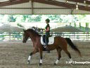Day 1<br> Felicitas Von Neumann<br> Assisting<br> Connie Thompson<br> Honor<br> 10 yrs. old TB/Hanoverian cross<br> Training: 2nd Level<br> Duration: 28 minutes