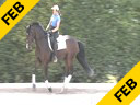 Conrad Schumacher<br> Assisting<br> Jen Beaumert<br> Deleware<br> Danish Warmblood<br> 6 yrs.  Gelding<br> Training: 2nd  Level<br> Duration:34 minutes