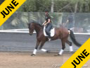 Mette Rosencrantz<br> Riding & Lecturing<br> Herz Regent<br> Hanoverian<br> 4 yrs old Gelding<br> By: Hotline/Alabaster<br> Owner: Finally Partners LLC<br> Trainig: Training Level<br> Duration: 28 minutes<br>