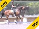 Kathy Connelly<br> Assisting<br> Hannah Pierucci<br> El Espiritu<br> Aldalusian<br> 12 yrs. Old Stallion<br> Training:  GP<br> Owner:  Pati Pierucci<br> Duration: 27 minutes