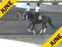 J.J.Tate<br> Riding &amp; Lecturing<br> Faberge<br> Westphalian<br> By: Florestan<br> 9 yrs. old Gelding<br> Training: 1-1- Level<br> Owner: Elizabeth Guarisco-Wolf<br> Duration: 42 minutes