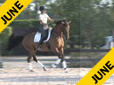 Sue Martin<br> Riding & Lecturing<br> Lex<br> Holsteiner<br> by: Libertino<br> 13 yrs. old Gelding<br> Training: GP Level<br> Owner: Marie Earl<br> Duration: 33 minutes