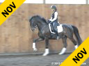 Sharon McCusker<br> Assisting<br> Kim Aikens<br> Drosty<br> Trakehner<br> by: Blue Hors Hertug<br> 11 yrs. old Gelding<br> Training: PSG<br> Owner: Kim Aikens<br> Duration: 45 minutes