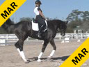 Day 3<br> Jan Brink<br> Assisting<br> Robin Matteson<br> Eye Candy<br> 14 yrs. Old Hanoverian<br> 16th schooling I-1<br> Owner: Robin Matteson<br> Training: PSG/I1<br> Duration: 38 minutes