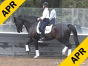 Conrad Schumacher<br> Assisting<br> Jessica Van Eyek<br> Wittelsbach D<br> KWPN<br> by: Rodieum<br> 8 yrs. old Gelding<br> Training: 4th Level<br> Owner: Mary Johnson<br> Duration: 23 minutes